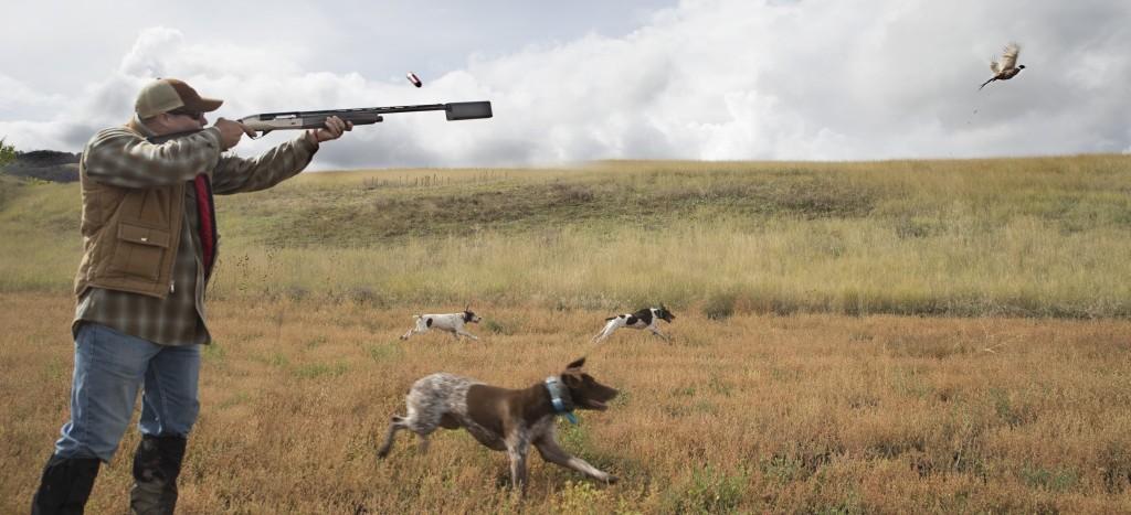 Salvo Hunting